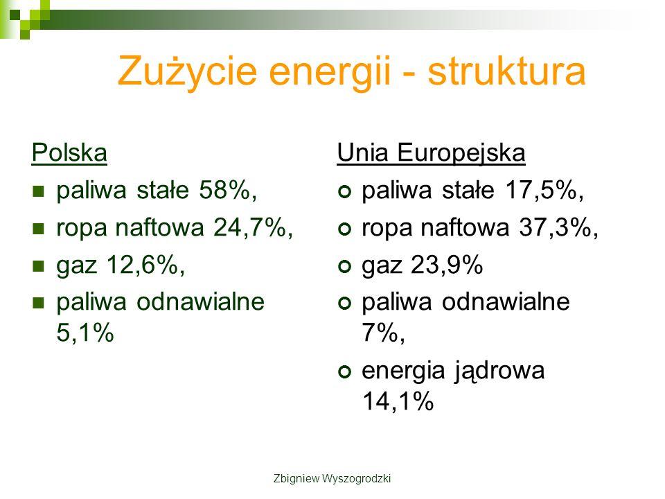 Zużycie energii - struktura