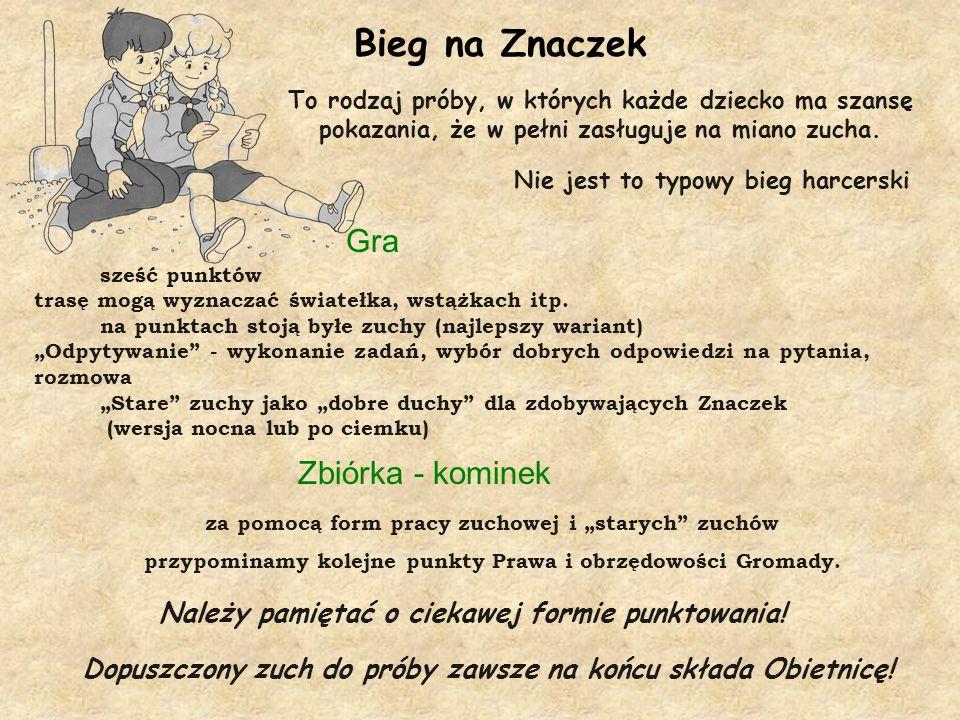 Bieg na Znaczek Gra Zbiórka - kominek