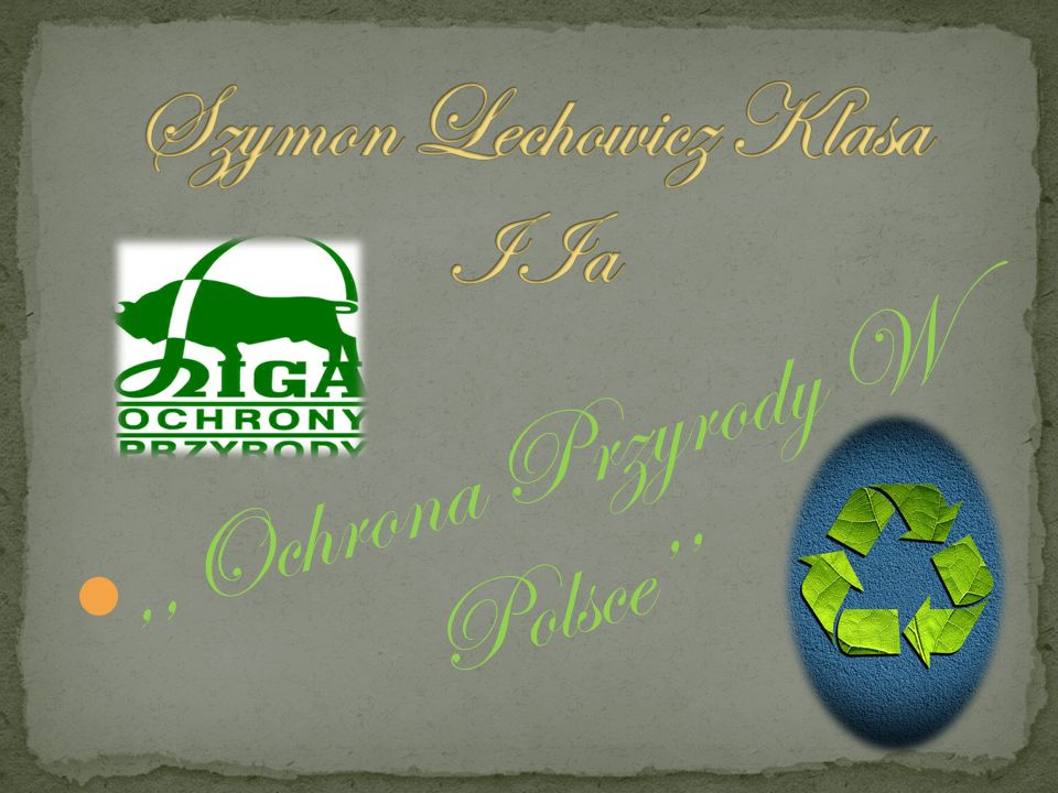 Szymon Lechowicz Klasa IIa