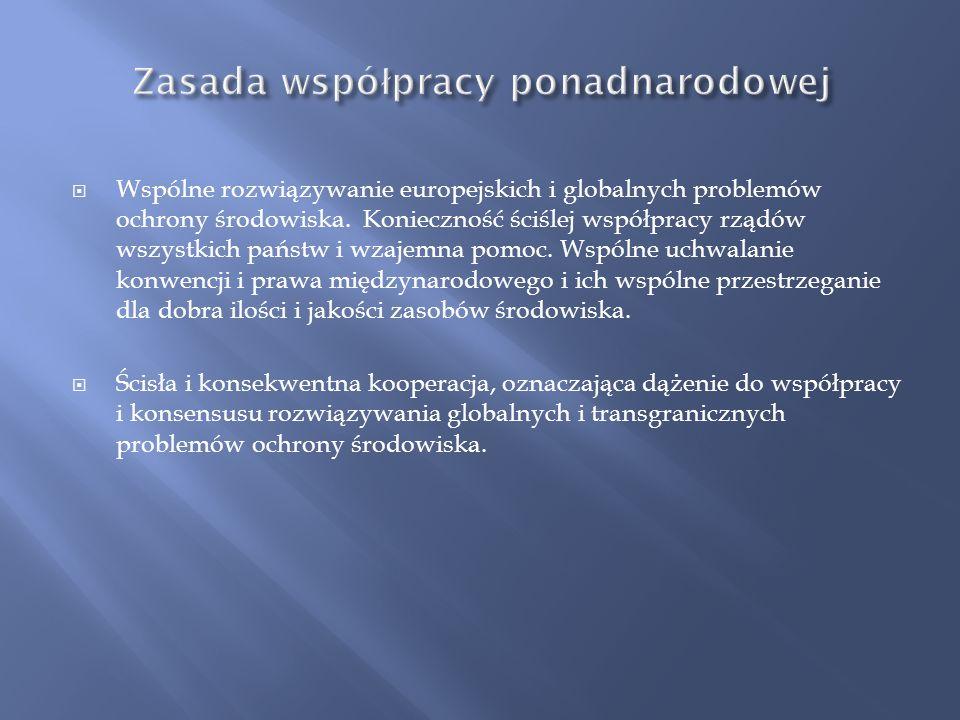 Zasada współpracy ponadnarodowej