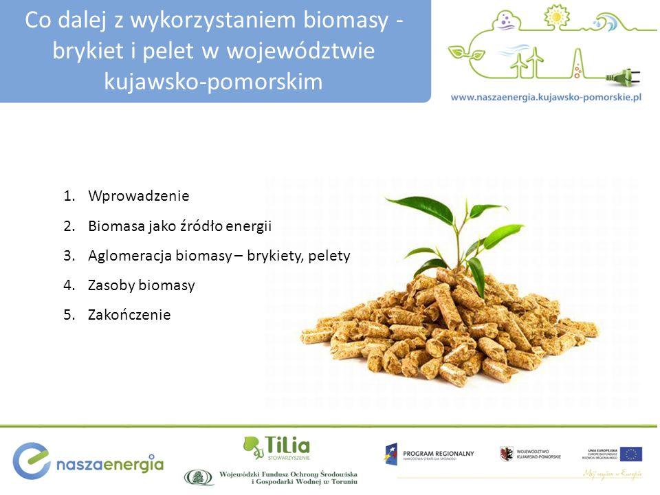 Co dalej z wykorzystaniem biomasy - brykiet i pelet w województwie kujawsko-pomorskim