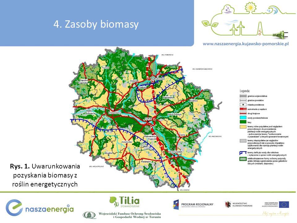 Rys. 1. Uwarunkowania pozyskania biomasy z roślin energetycznych