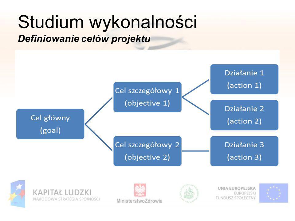 Studium wykonalności Definiowanie celów projektu
