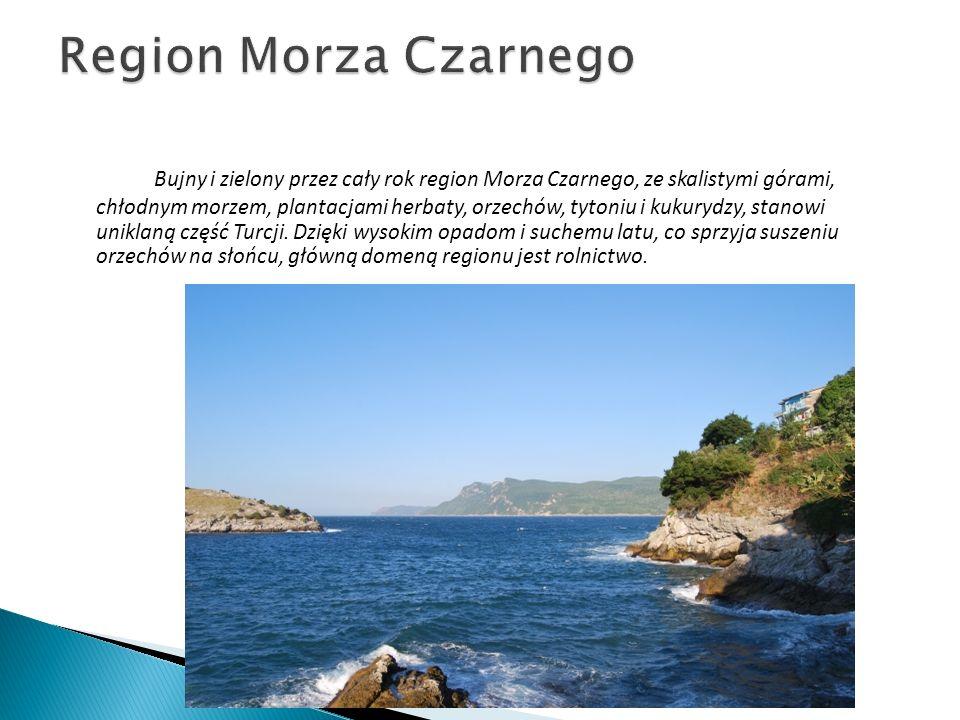 Region Morza Czarnego