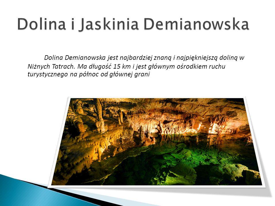 Dolina i Jaskinia Demianowska