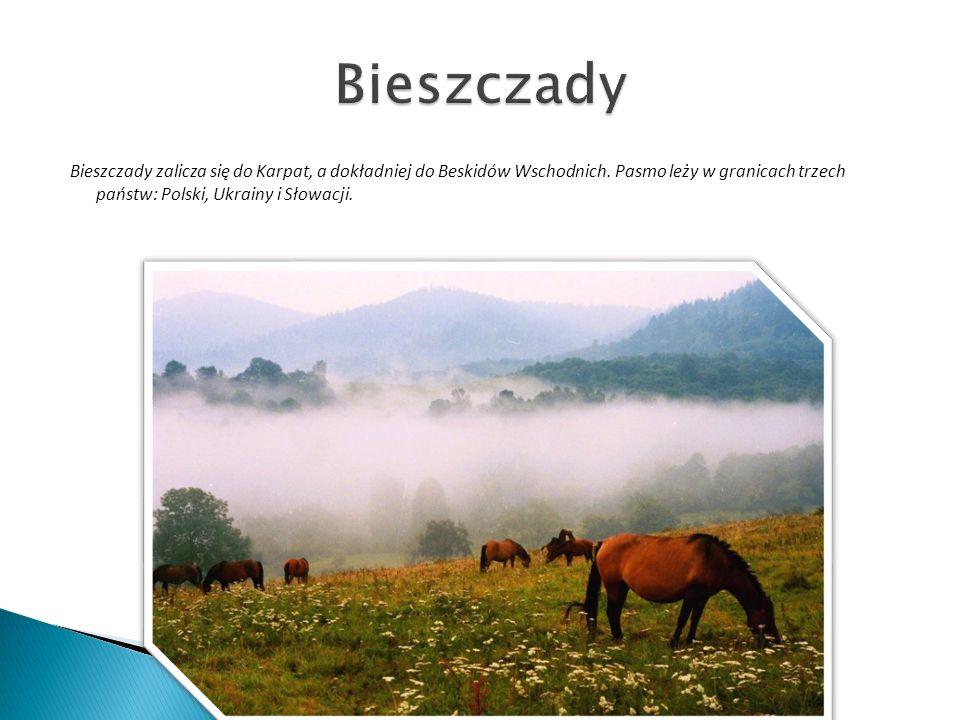 Bieszczady Bieszczady zalicza się do Karpat, a dokładniej do Beskidów Wschodnich.
