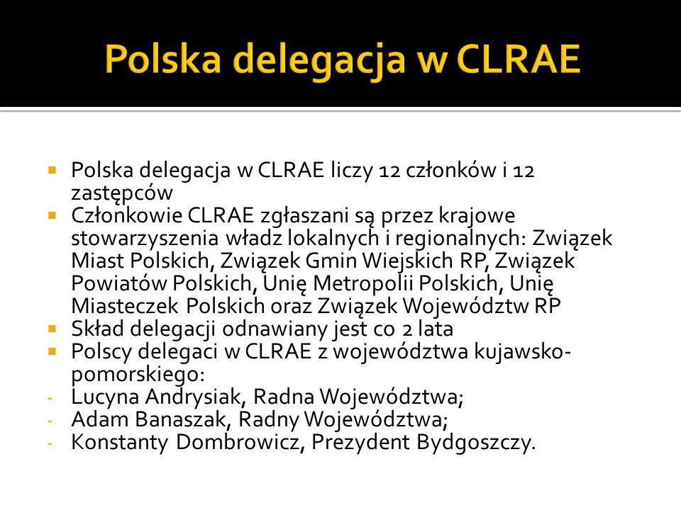 Polska delegacja w CLRAE