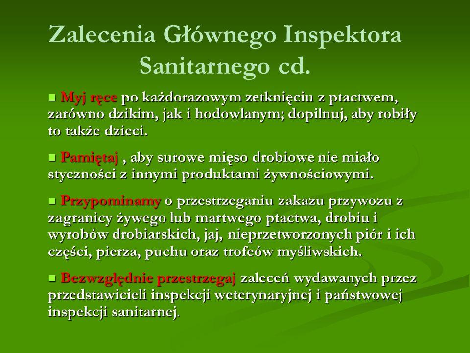 Zalecenia Głównego Inspektora Sanitarnego cd.