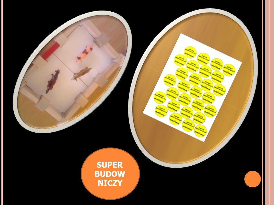 SUPER BUDOWNICZY