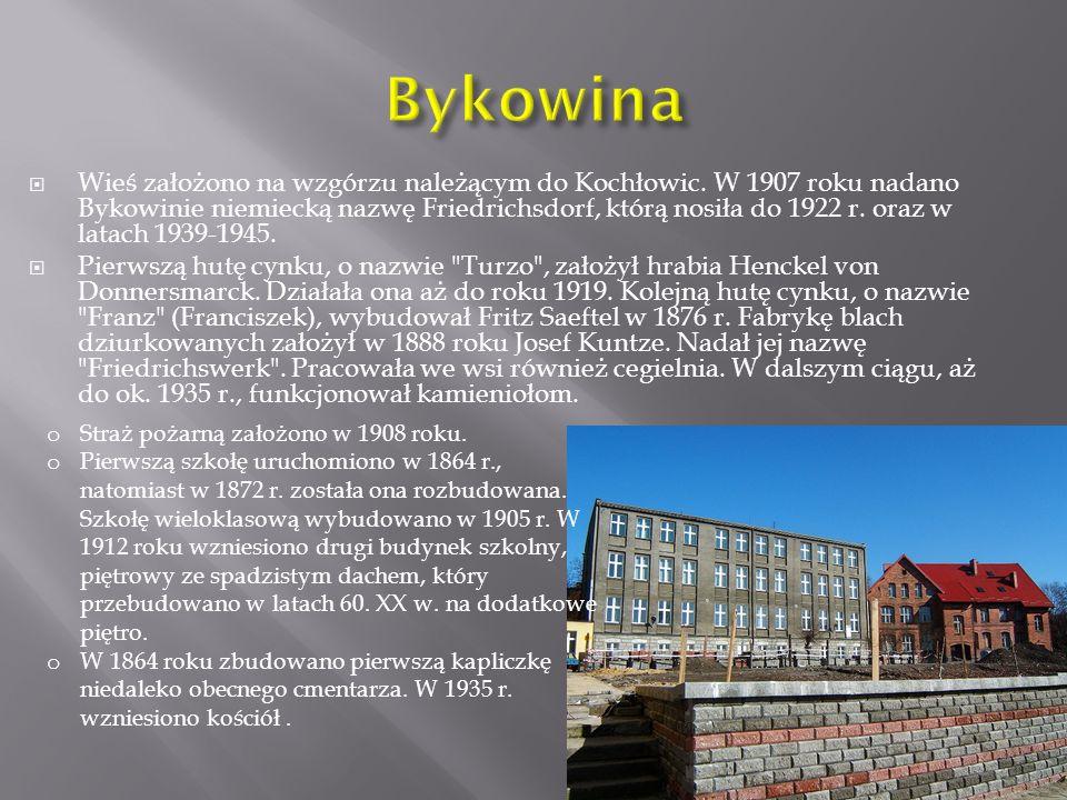 Bykowina