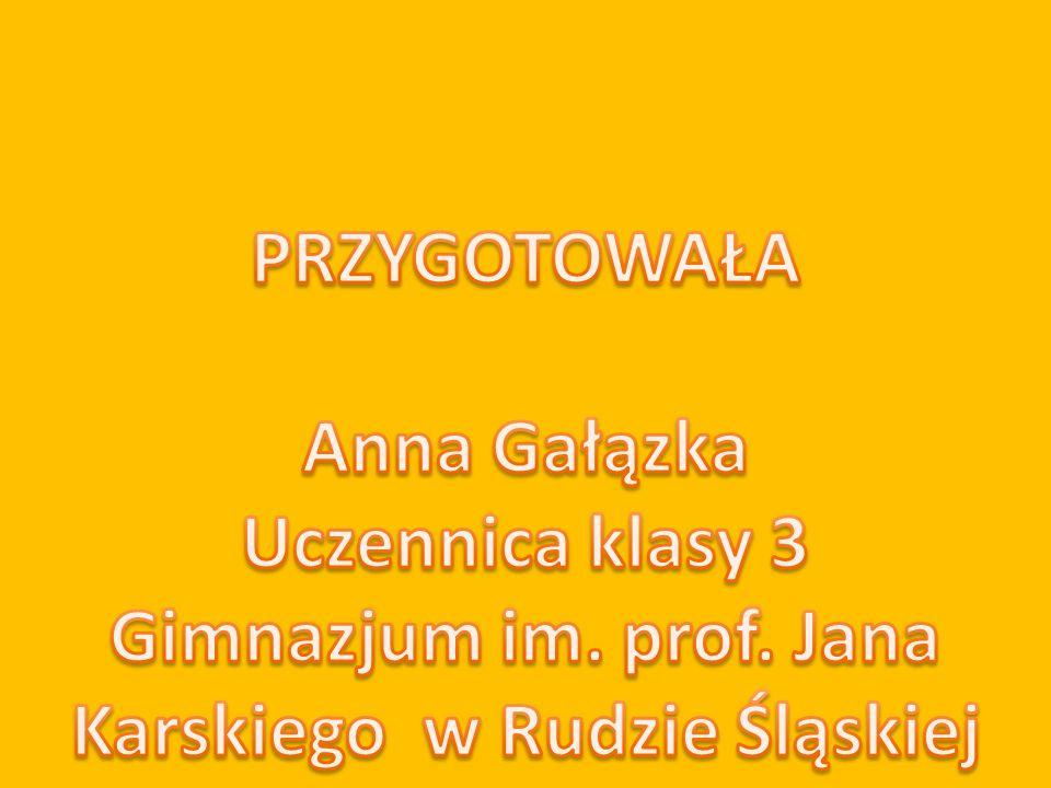 Gimnazjum im. prof. Jana Karskiego w Rudzie Śląskiej