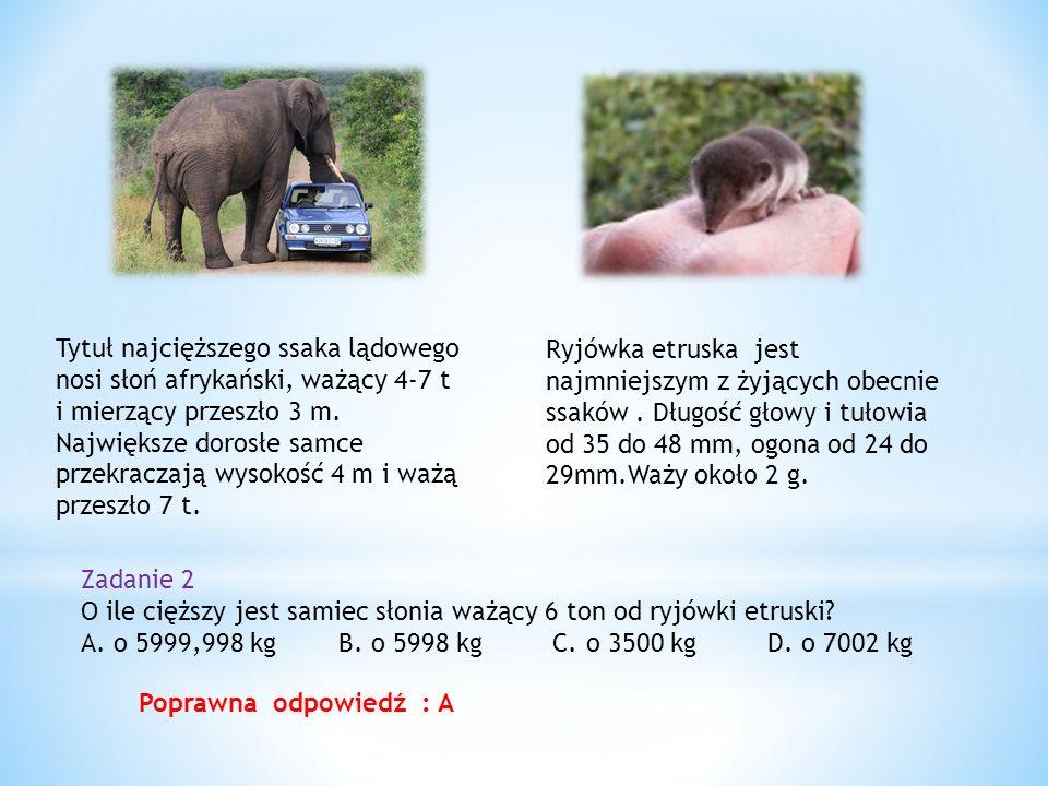 Tytuł najcięższego ssaka lądowego nosi słoń afrykański, ważący 4-7 t i mierzący przeszło 3 m. Największe dorosłe samce przekraczają wysokość 4 m i ważą przeszło 7 t.
