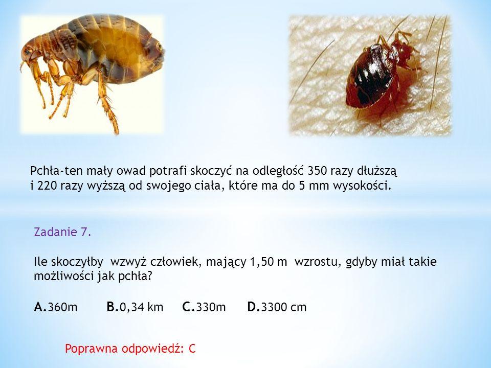 Pchła-ten mały owad potrafi skoczyć na odległość 350 razy dłuższą i 220 razy wyższą od swojego ciała, które ma do 5 mm wysokości.