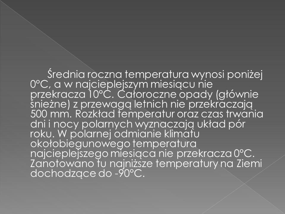 Średnia roczna temperatura wynosi poniżej 0°C, a w najcieplejszym miesiącu nie przekracza 10°C.