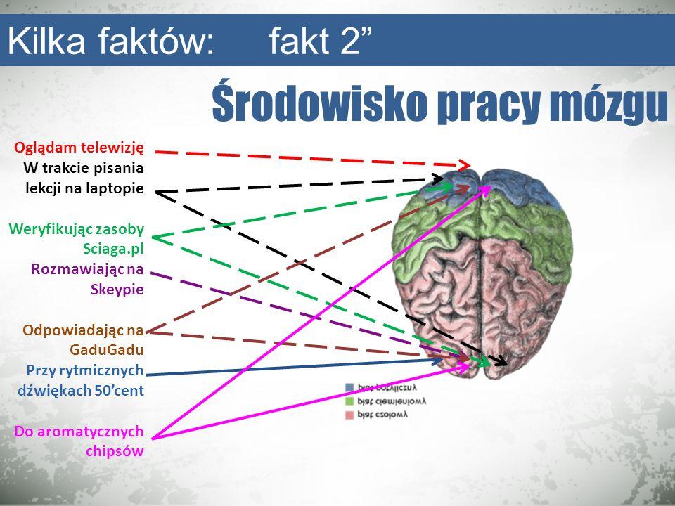 Środowisko pracy mózgu