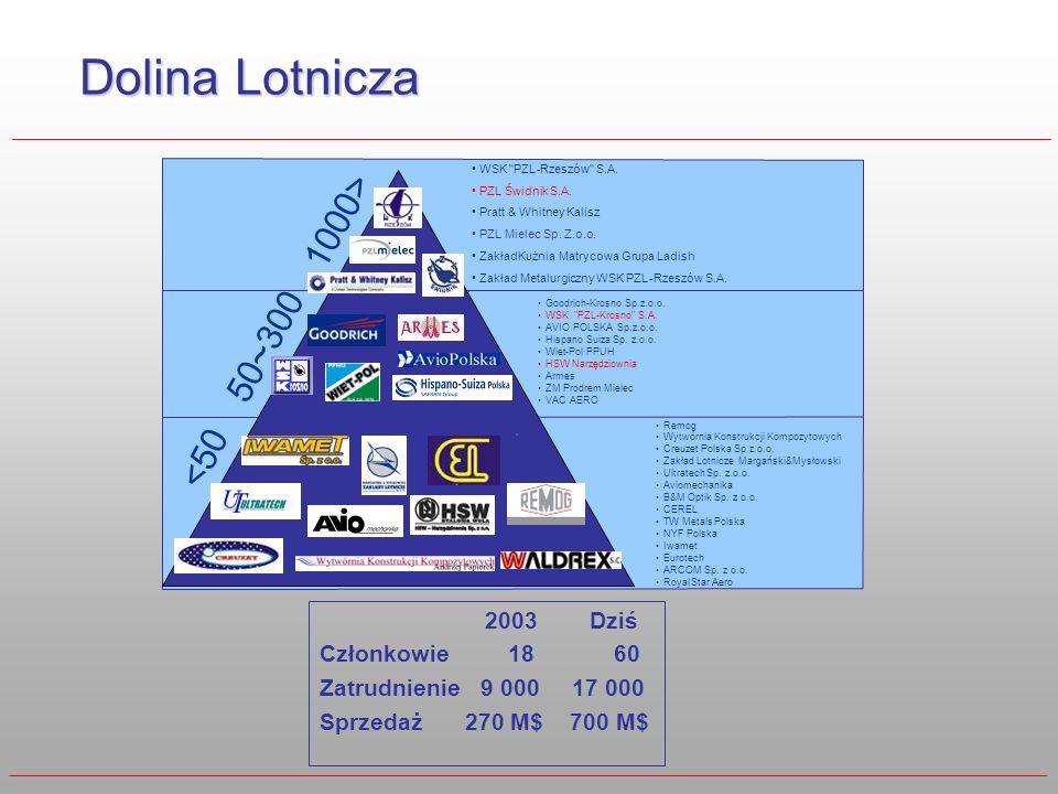 Dolina Lotnicza 1000> 50~300 <50 2003 Dziś Członkowie 18 60
