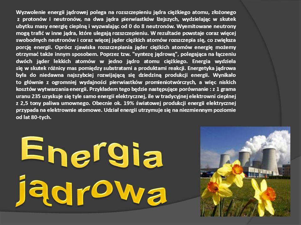 Wyzwolenie energii jądrowej polega na rozszczepieniu jądra ciężkiego atomu, złożonego z protonów i neutronów, na dwa jądra pierwiastków lżejszych, wydzielając w skutek ubytku masy energię cieplną i wyzwalając od 0 do 8 neutronów. Wyemitowane neutrony mogą trafić w inne jądra, które ulegają rozszczepieniu. W rezultacie powstaje coraz więcej swobodnych neutronów i coraz więcej jąder ciężkich atomów rozszczepia się, co zwiększa porcję energii. Oprócz zjawiska rozszczepiania jąder ciężkich atomów energię możemy otrzymać także innym sposobem. Poprzez tzw. syntezę jądrową , polegająca na łączeniu dwóch jąder lekkich atomów w jedno jądro atomu ciężkiego. Energia wydziela się w skutek różnicy mas pomiędzy substratami a produktami reakcji. Energetyka jądrowa była do niedawna najszybciej rozwijającą się dziedziną produkcji energii. Wynikało to głównie z ogromniej wydajności pierwiastków promieniotwórczych, a więc niskich kosztów wytwarzania energii. Przykładem tego będzie następujące porównanie : z 1 grama uranu 235 uzyskuje się tyle samo energii elektrycznej, ile w tradycyjnej elektrowni cieplnej z 2,5 tony paliwa umownego. Obecnie ok. 19% światowej produkcji energii elektrycznej przypada na elektrownie atomowe. Udział energii utrzymuje się na niezmiennym poziomie od lat 80-tych.