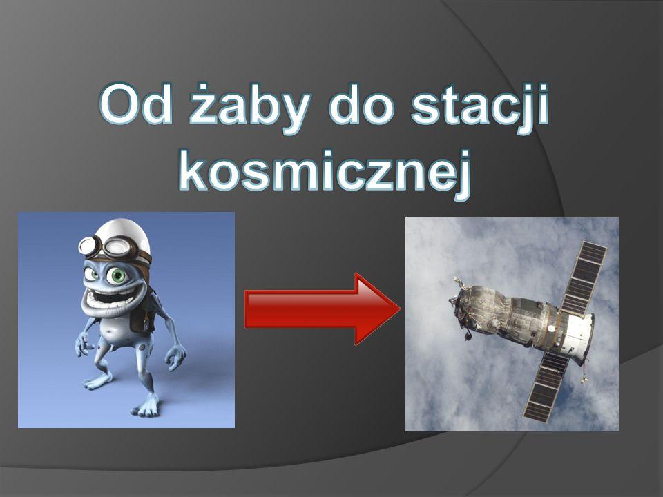 Od żaby do stacji kosmicznej