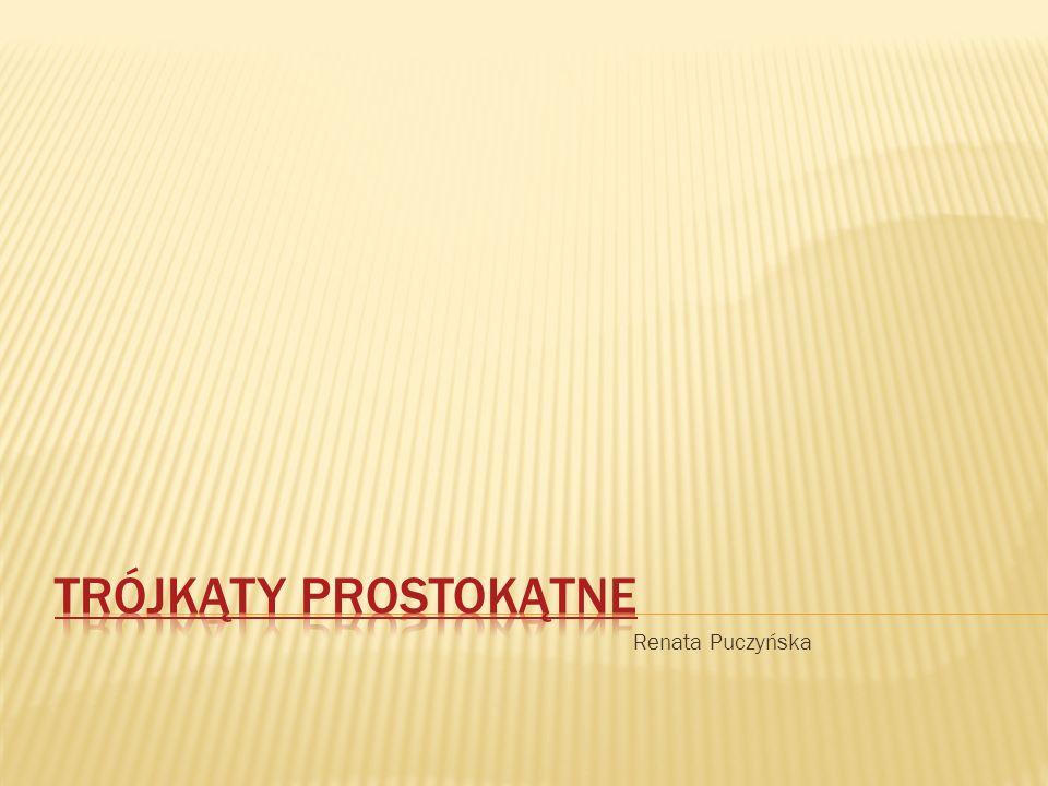 Trójkąty prostokątne Renata Puczyńska
