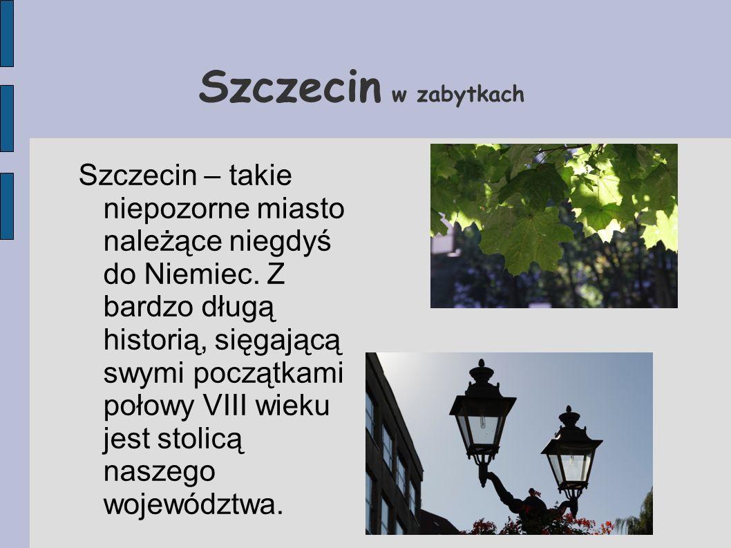 Szczecin w zabytkach