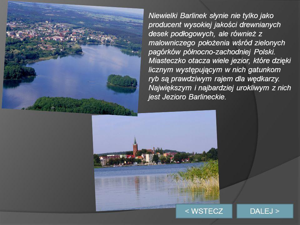 Niewielki Barlinek słynie nie tylko jako producent wysokiej jakości drewnianych desek podłogowych, ale również z malowniczego położenia wśród zielonych pagórków północno-zachodniej Polski. Miasteczko otacza wiele jezior, które dzięki licznym występującym w nich gatunkom ryb są prawdziwym rajem dla wędkarzy. Największym i najbardziej urokliwym z nich jest Jezioro Barlineckie.