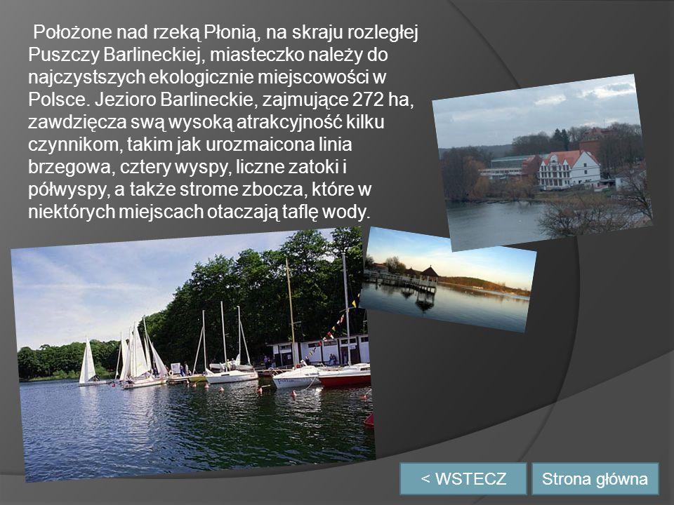 Położone nad rzeką Płonią, na skraju rozległej Puszczy Barlineckiej, miasteczko należy do najczystszych ekologicznie miejscowości w Polsce. Jezioro Barlineckie, zajmujące 272 ha, zawdzięcza swą wysoką atrakcyjność kilku czynnikom, takim jak urozmaicona linia brzegowa, cztery wyspy, liczne zatoki i półwyspy, a także strome zbocza, które w niektórych miejscach otaczają taflę wody.