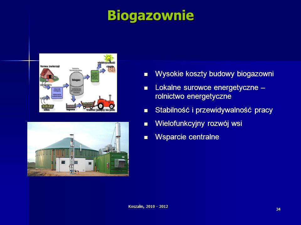 Biogazownie Wysokie koszty budowy biogazowni