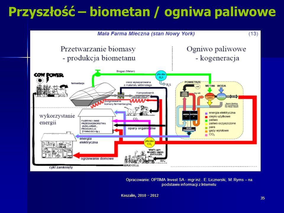 Przyszłość – biometan / ogniwa paliwowe