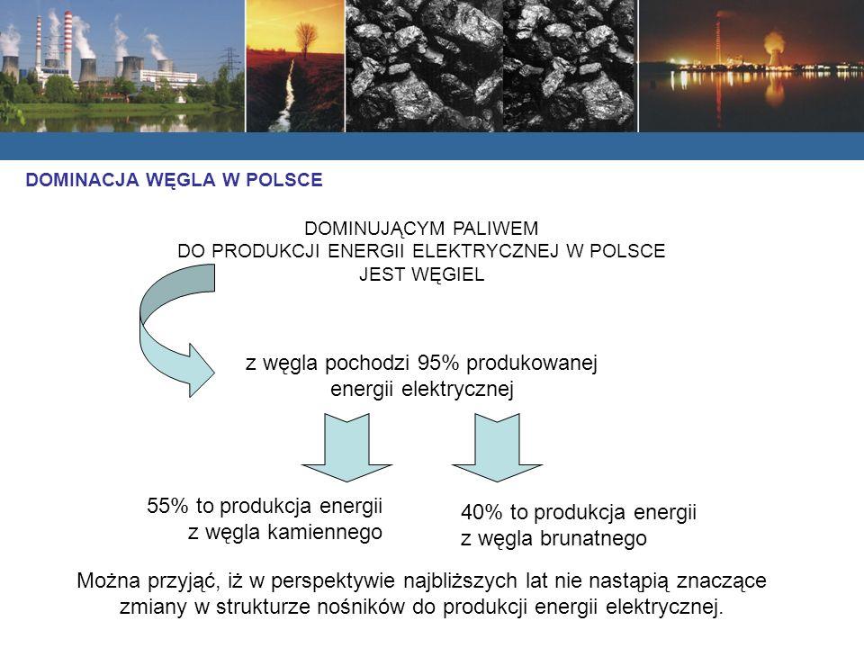 z węgla pochodzi 95% produkowanej