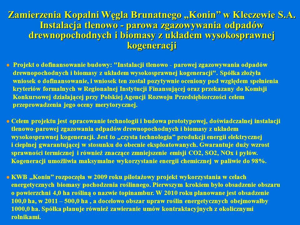 """Zamierzenia Kopalni Węgla Brunatnego """"Konin w Kleczewie S. A"""