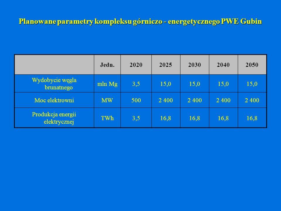 Planowane parametry kompleksu górniczo - energetycznego PWE Gubin