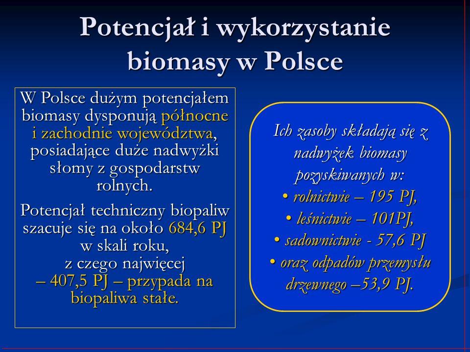 Potencjał i wykorzystanie biomasy w Polsce