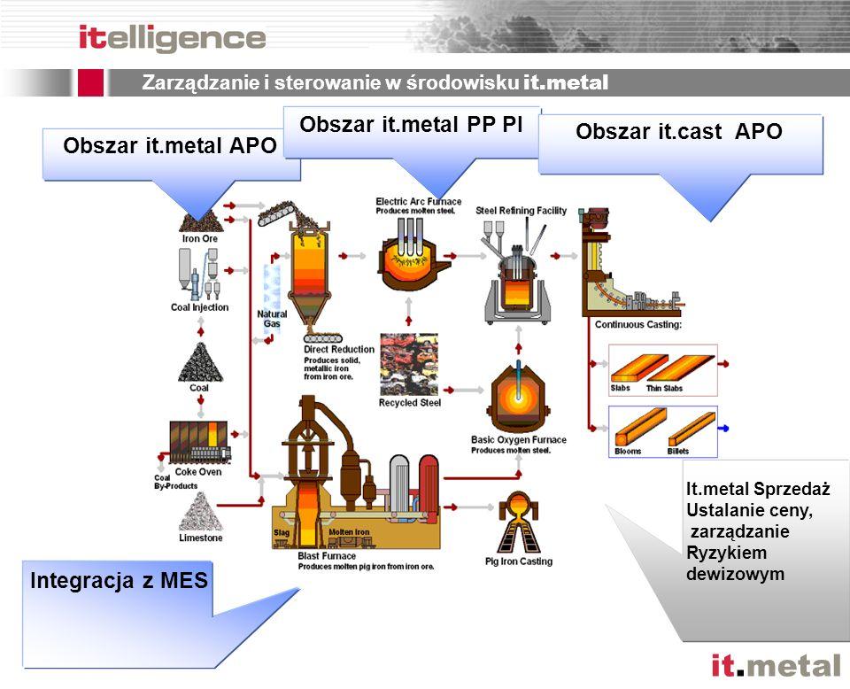 Zarządzanie i sterowanie w środowisku it.metal