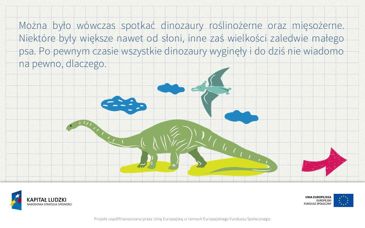 Można było wówczas spotkać dinozaury roślinożerne oraz mięsożerne