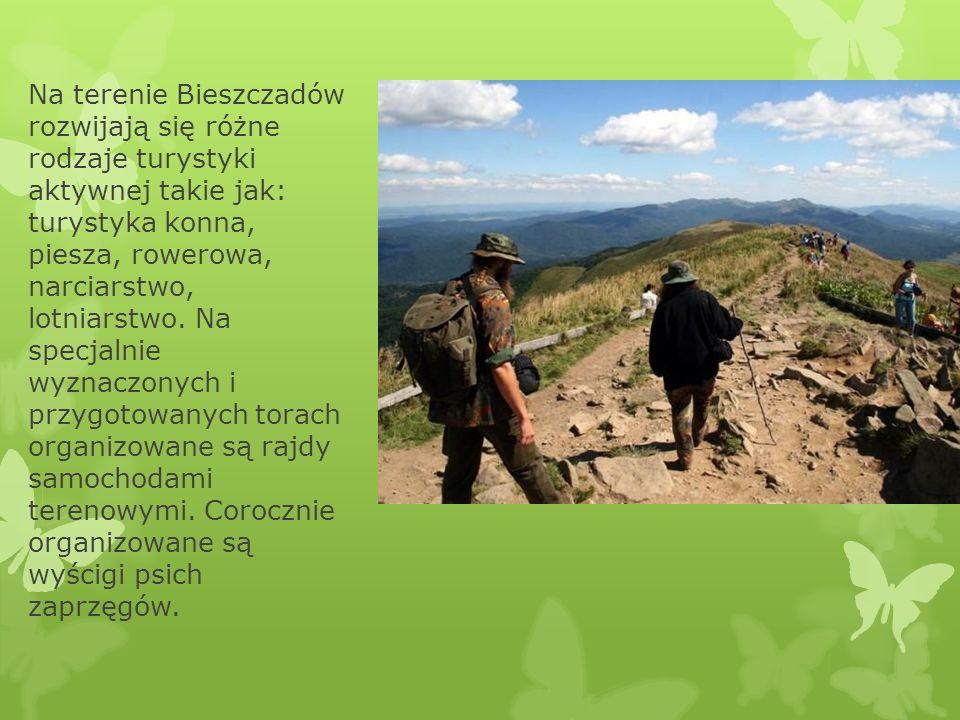 Na terenie Bieszczadów rozwijają się różne rodzaje turystyki aktywnej takie jak: turystyka konna, piesza, rowerowa, narciarstwo, lotniarstwo.