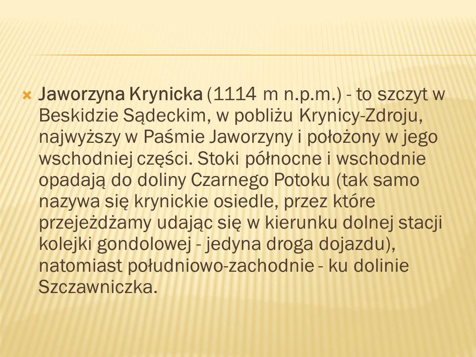 Jaworzyna Krynicka (1114 m n. p. m