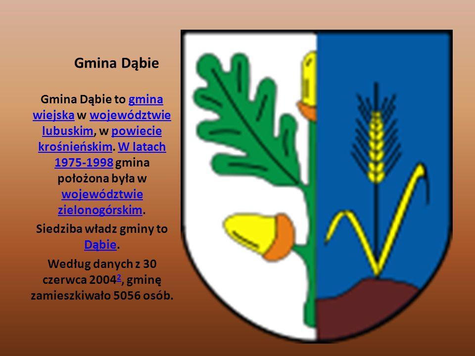 Siedziba władz gminy to Dąbie.