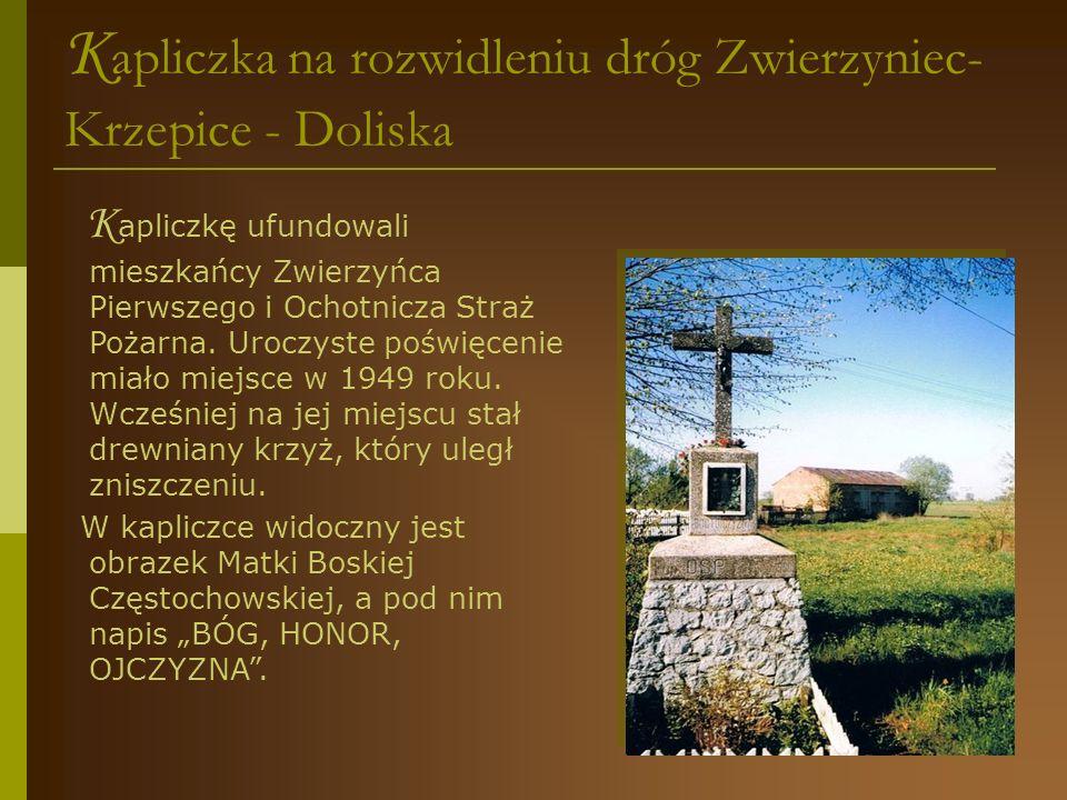 Kapliczka na rozwidleniu dróg Zwierzyniec- Krzepice - Doliska
