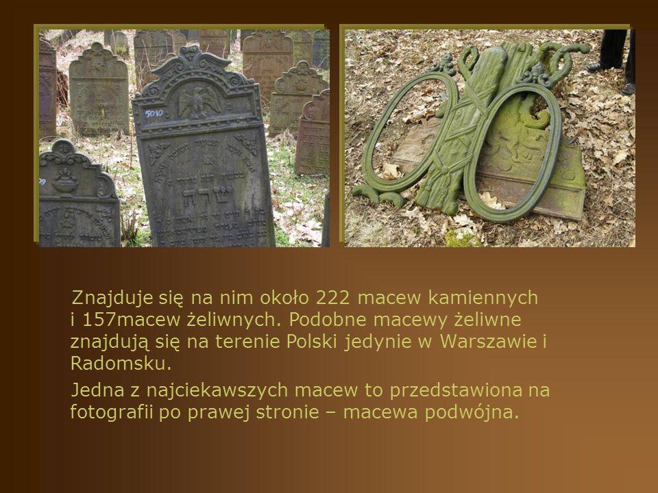 Znajduje się na nim około 222 macew kamiennych i 157macew żeliwnych