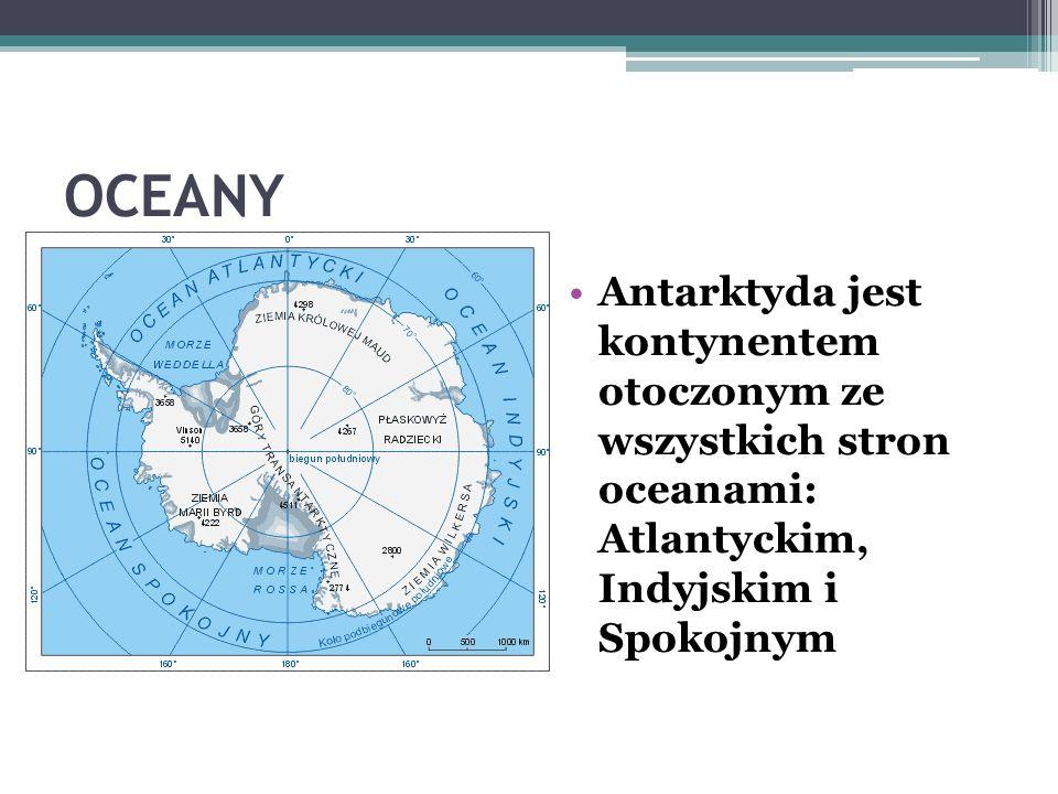 OCEANY Antarktyda jest kontynentem otoczonym ze wszystkich stron oceanami: Atlantyckim, Indyjskim i Spokojnym.