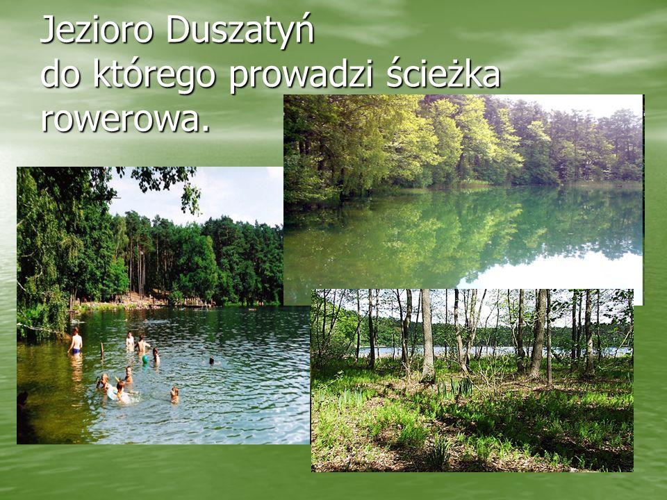 Jezioro Duszatyń do którego prowadzi ścieżka rowerowa.