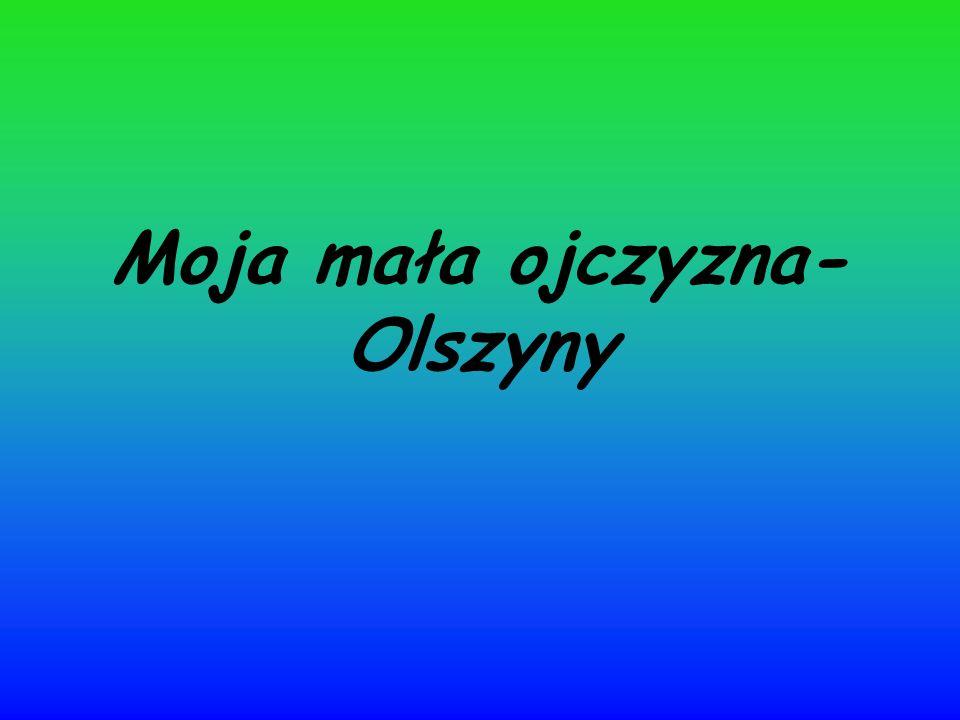 Moja mała ojczyzna- Olszyny