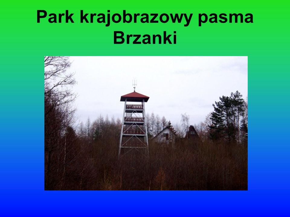 Park krajobrazowy pasma Brzanki