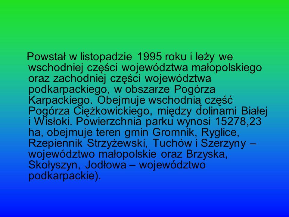 Powstał w listopadzie 1995 roku i leży we wschodniej części województwa małopolskiego oraz zachodniej części województwa podkarpackiego, w obszarze Pogórza Karpackiego.
