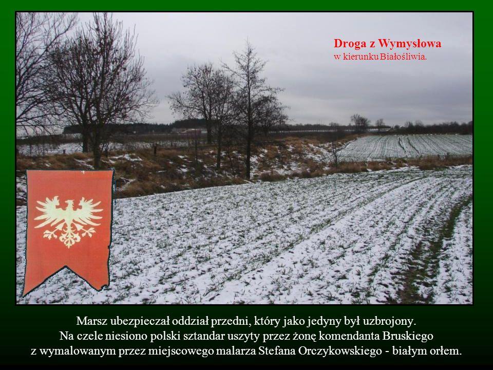 Droga z Wymysłowa w kierunku Białośliwia.
