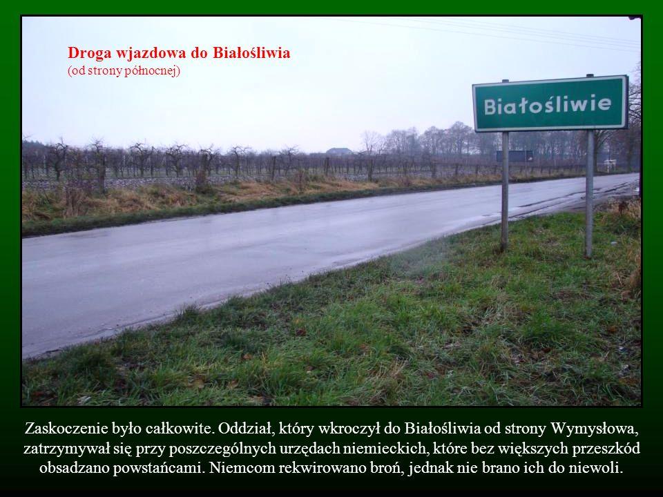 Droga wjazdowa do Białośliwia (od strony północnej)