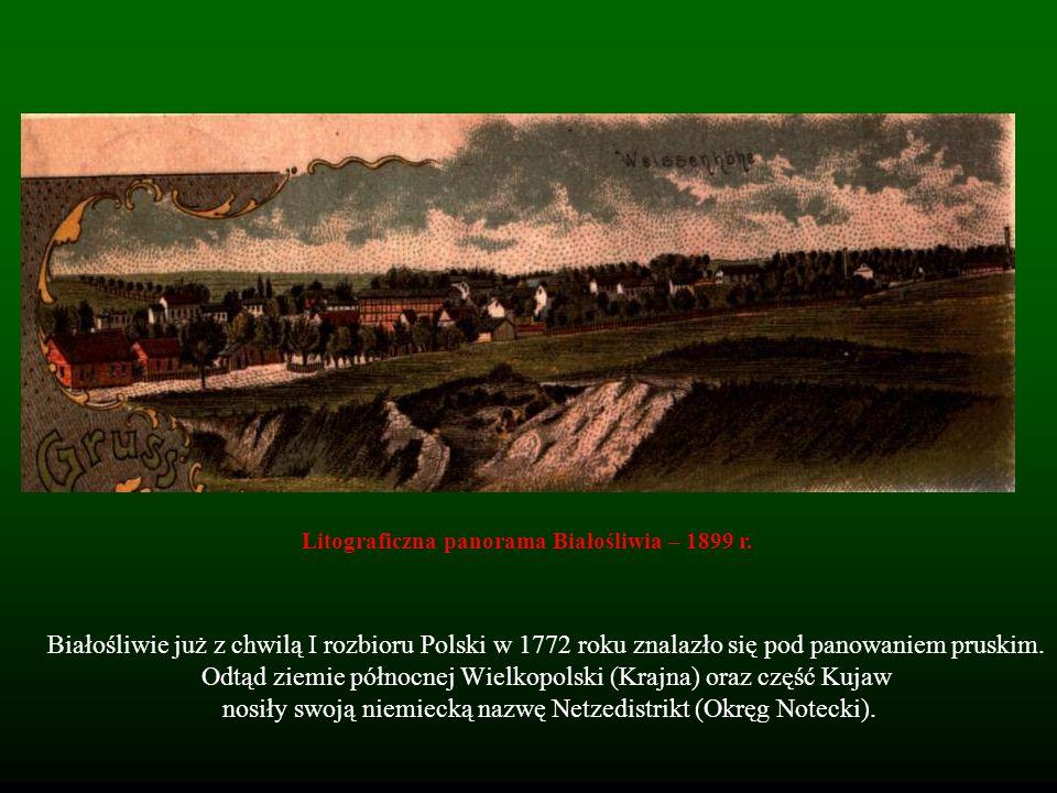Litograficzna panorama Białośliwia – 1899 r.