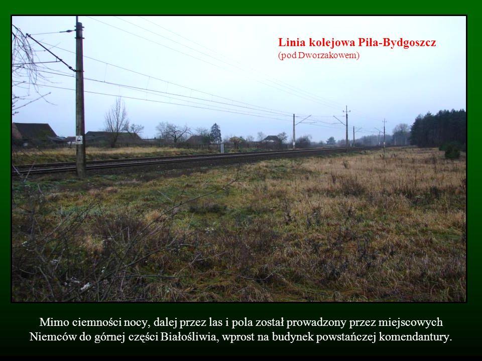 Linia kolejowa Piła-Bydgoszcz (pod Dworzakowem)