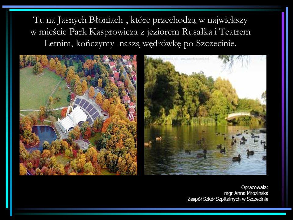 Tu na Jasnych Błoniach , które przechodzą w największy w mieście Park Kasprowicza z jeziorem Rusałka i Teatrem Letnim, kończymy naszą wędrówkę po Szczecinie.