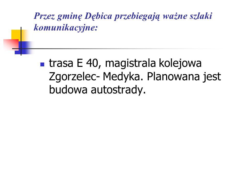 Przez gminę Dębica przebiegają ważne szlaki komunikacyjne: